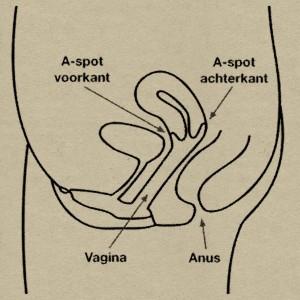A-spot